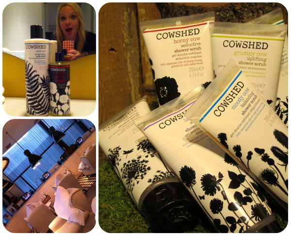 Cowshed_Collage2
