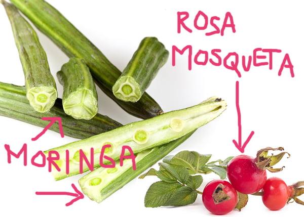 moringa_rosamosqueta