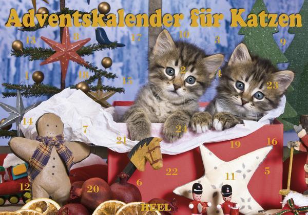Advent_Katzen